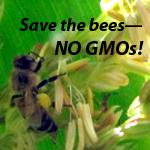 Swarm Monsanto